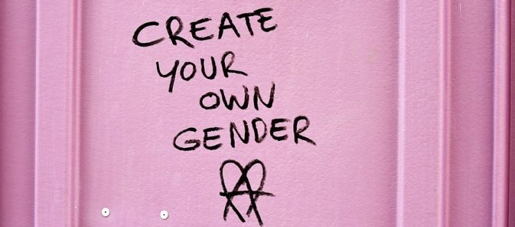 L'assurdità dell'ideologia transgender:……