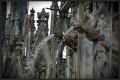 Se oggi ammirate il Duomo di Milano è anche grazie........