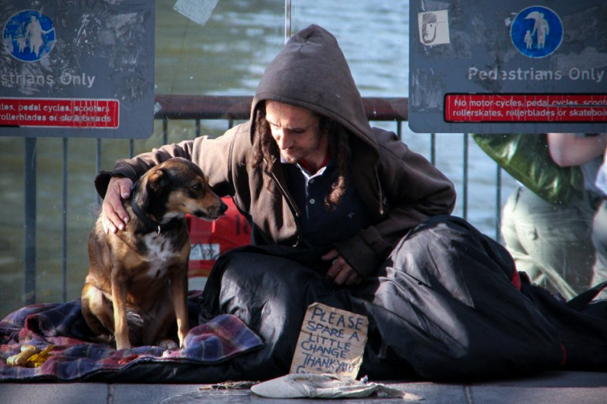 Sul dare cose sante ai cani