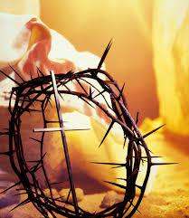 La Sacra Spina della Passione è tornata a fiorire